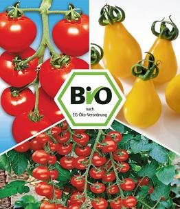 BIO-Tomaten-Kollektion