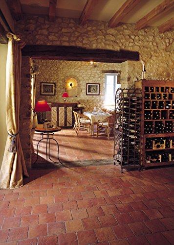 Cotto-Stone Périgord | Bodenplatten | Fliesen | Terracotta | Cotto | Terrasse | Musterplatte (Rot) - 6