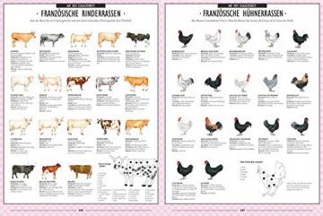 Die Gourmet-Bibel Frankreich: Absolut alles über die französische Küche: Absolut alles ber die franzsische Kche - 3