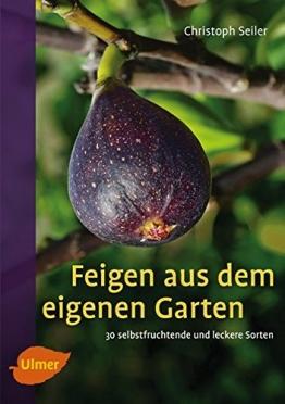 Feigen aus dem eigenen Garten: 30 selbstfruchtende und leckere Sorten - 1