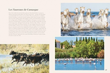 Kochbuch Provence. 80 Sehnsuchtsrezepte aus dem Süden Frankreichs. Kulinarische Genüsse aus Südfrankreich: von der Cote d'azur, aus St.Tropez oder Cannes. - 7