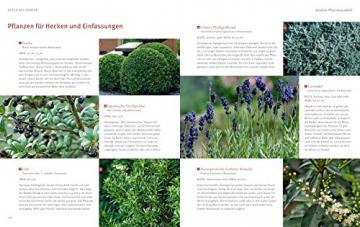 Mediterrane Gärten gestalten (GU Garten Extra) - 9