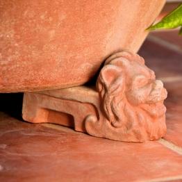 Terracotta-Kübelfuß, Löwenfuß