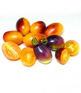 Tomate 'Indigo Kumquat'