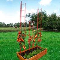 Tomaten-Rankgitter XXL, 3-teilig, Höhe 236 cm