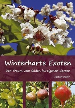 Winterharte Exoten: Der Traum vom Süden im eigenen Garten - 1