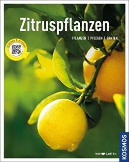 Zitruspflanzen: gestalten - pflanzen - ernten (Mein Garten) - 1